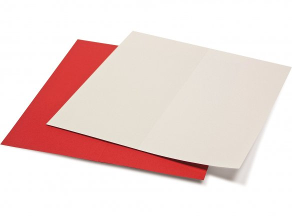 Artoz 1001 DIN long folding card, coloured