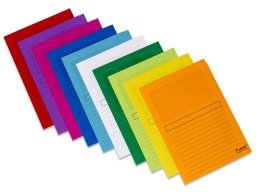 Exacompta Forever window folders