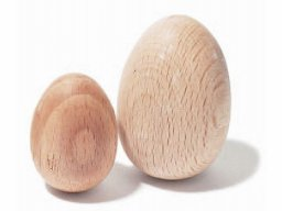 Beechwood egg, raw