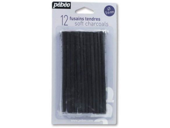 Pebeo natural willow charcoal