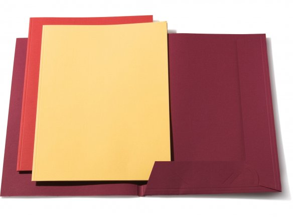 Artoz Presenta document folder, coloured