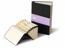 Moleskine sectioned book