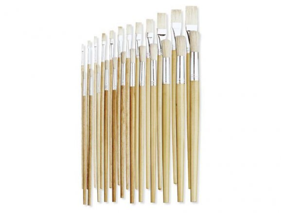 Bristle brush set, long handled
