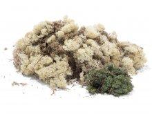 Iceland lichen, soft, coloured