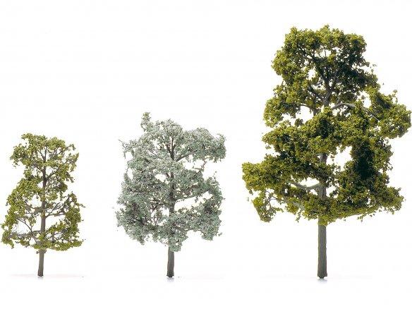 Laubbäume geätzt