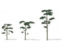 Etched brass Scots pine trees