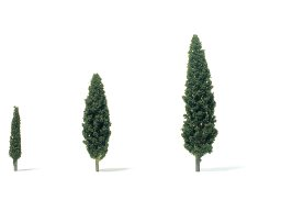 String and wire cypresses (poplars)