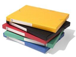 Exacompta Karton-Archivbox mit Gummizug