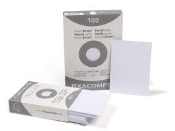 Exacompta file cards, grid style